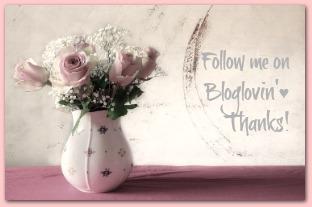 Follow Ducks 'n a Row on Bloglovin'