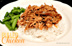 Pulled chicken on rice
