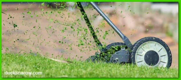 Cutting the lawn is a job kids can do to bless their dads #giftideas