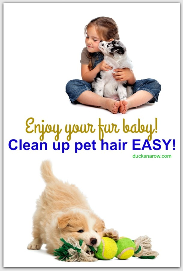 How to clean up pet hair EASY #tips
