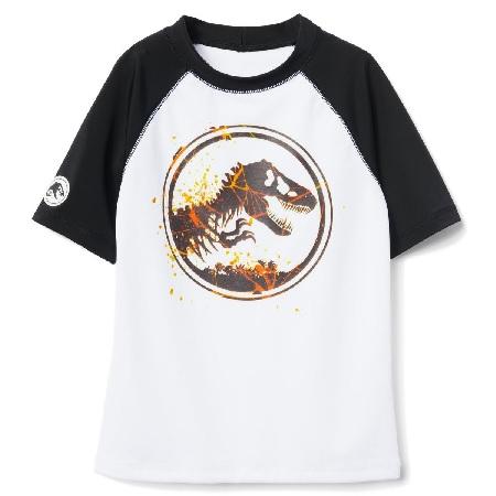 Jurassic World Rashguard tshirt #ad