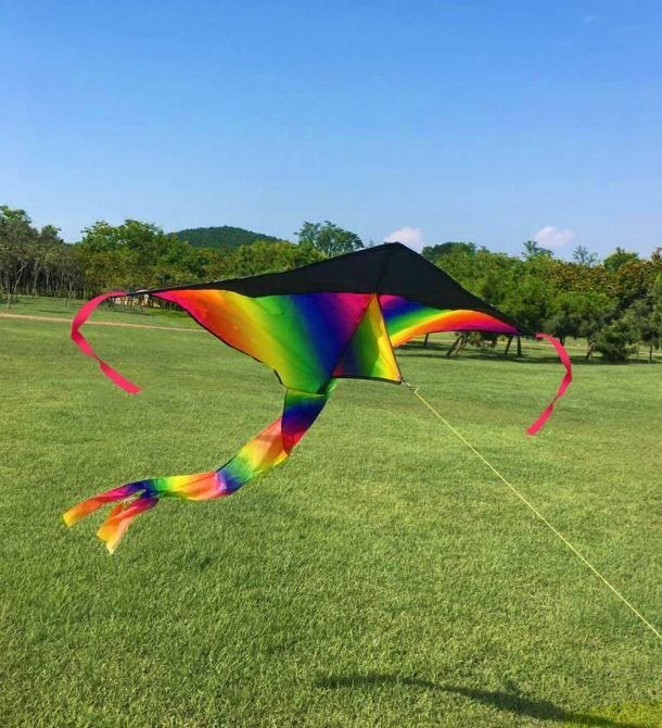 Pretty rainbow colored kite #toys #ad