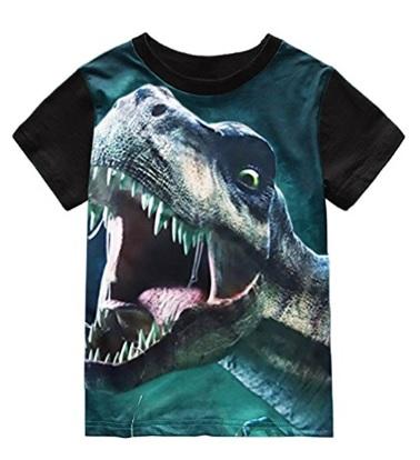 Fun T-rex dinosaur t-shirt for little boys #affiliate