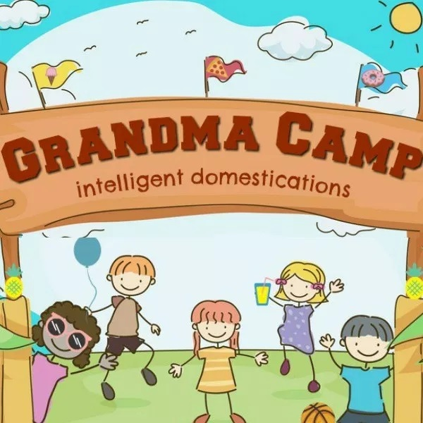 """Running a """"grandma camp?"""" Here are some great ideas from Intelligent Domestications"""