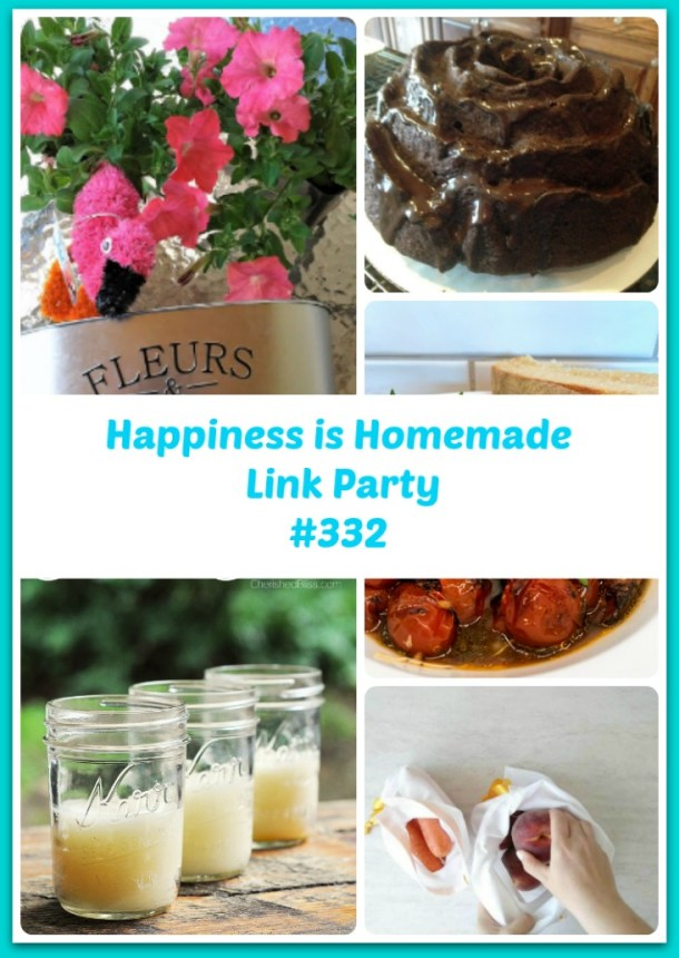 Happiness Is Homemade Link Party 332