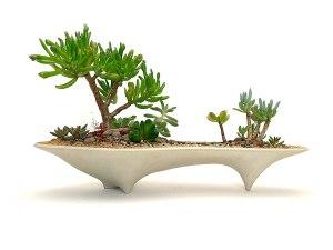 Handmade concrete succulent planter #ad