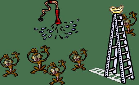 đức ngộ không thí nghiệm 5 con khỉ