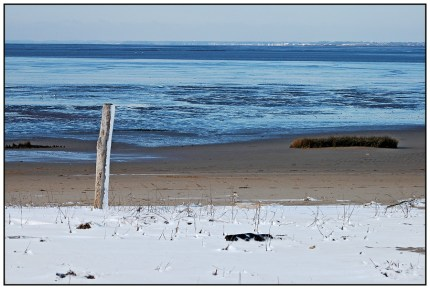 CP-DSC_4390-plage & Bassin