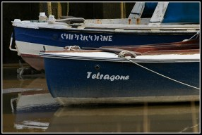 CP-DSC_4704-Capricorne & Tétragone