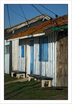 CP-DSC_5421-cabane & bancs