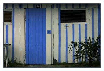CP-DSC_6139-37 bleu & blanc