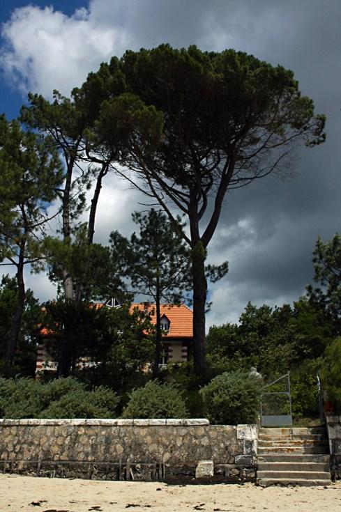 CP-DSC_7856-maison Taussat