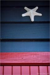 BLOG-DSC_31959-étoile de mer cabane porte rouge