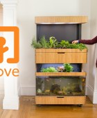 Fish Tank Garden – Grow Fresh Food All Year Round