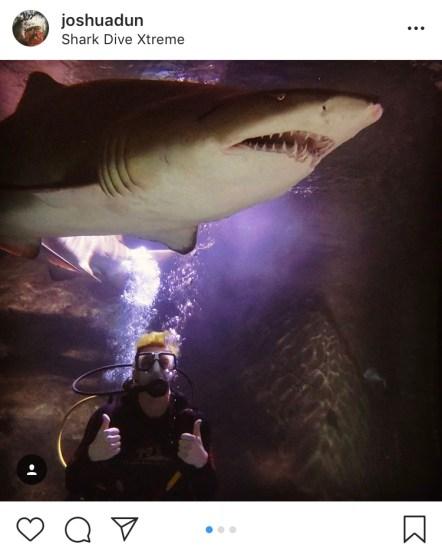 ดำน้ำกับฉลาม