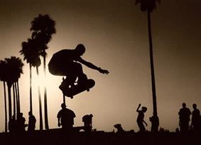 venice beach skaters