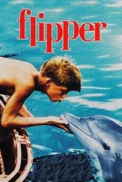 flipper_box