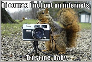 funny-pictures-creepy-squirrel-camera-park