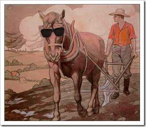 horse-tao
