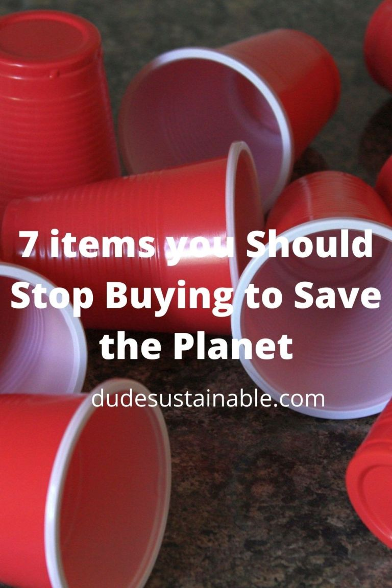 7 items you should stop wasting money on because they're harming the planet