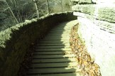 Clifty Falls State Park Stone Steps
