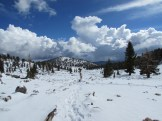 Cottonwood Pass in the Inyo National Forest