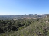 Desert View Outside Campo