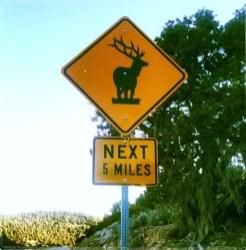 Elk Crossing Sign Outside Baker, Nevada