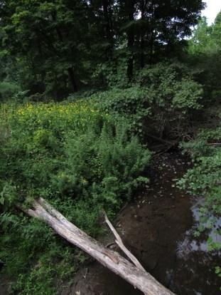 Flowery Creek Crossing Outside Pawling, New York