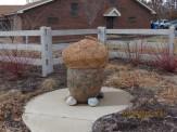 Acorn on Grant's Trail Outside St Louis