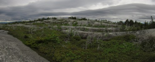Moxie Bald Mountain in Maine Panorama