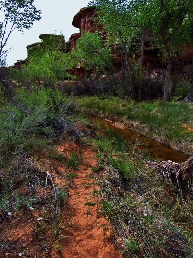 Trail in Salt Creek Canyon