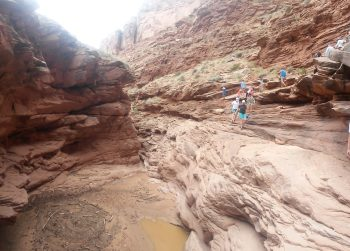 Hike in Bull Canyon on an Overnight Daily