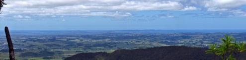 Herekino Forest Overlook Panorama