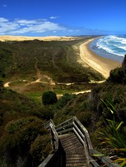 Stairs above Ninety Mile Beach and Pukekarea