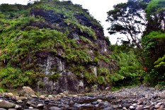 Steep Cliff in the Kaimai Range Panorama