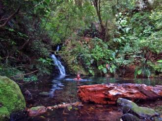 Swimming in Waipapa Stream