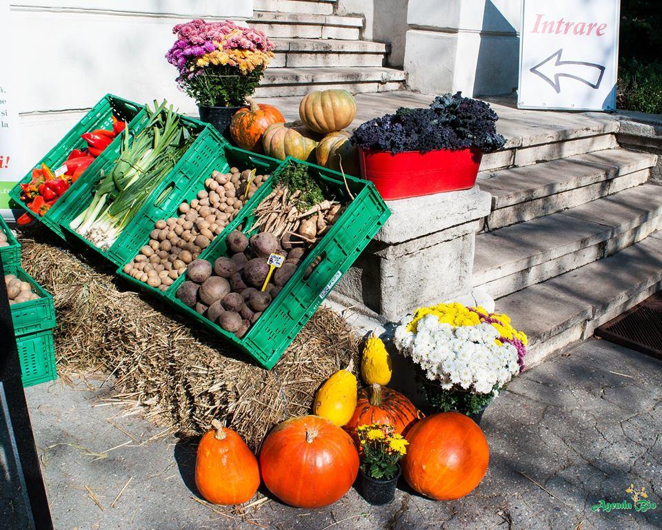 legume fericite
