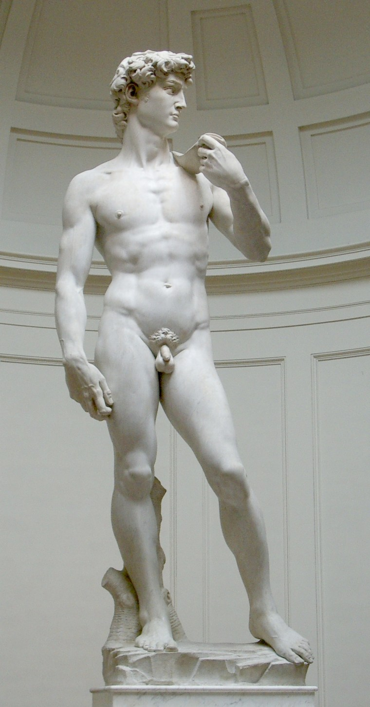 Michelangelo Bonarroti, David