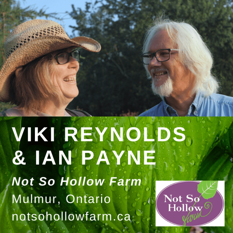 The owners of Not So Hollow Farm, Viki Reynolds and Ian Payne.