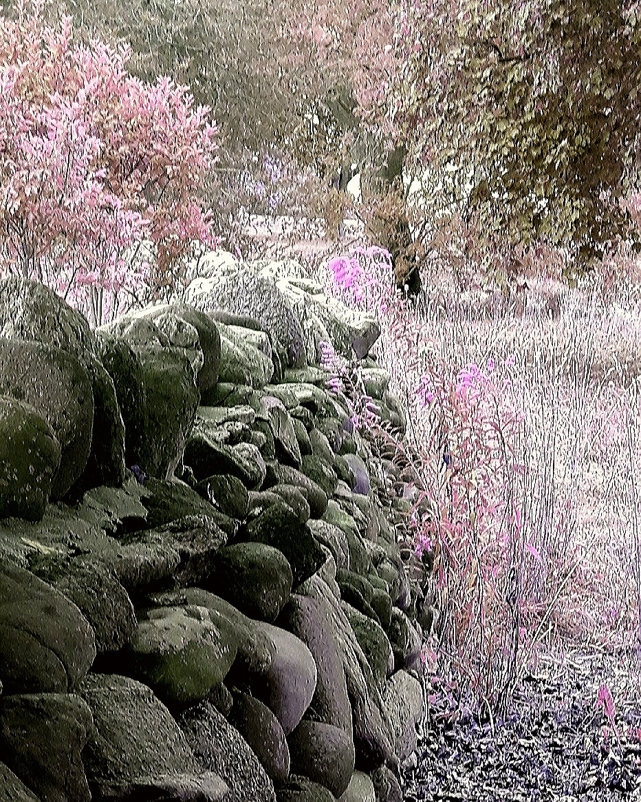 Dry Stack Stone Fence By ecmunson