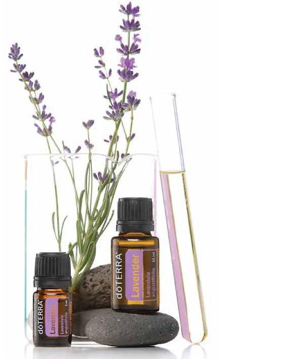 Lavendel Öl von doTERRA