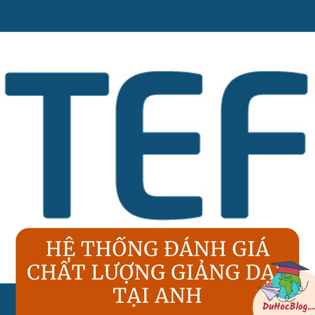 TEF - Hệ thống đánh giá chất lượng giảng dạy tại Anh