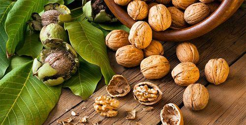 Как высушить орехи в духовке