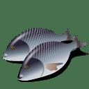 Fish-Dorada-icon