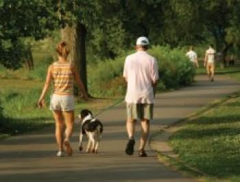 paseo-con-perro