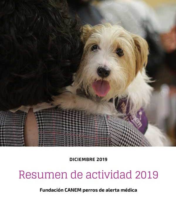 Resumen de actividades de la fundación en 2019