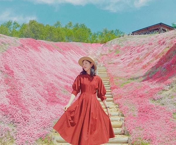 Du lịch Nhật Bản khi nào đẹp/ Thời điểm lý tưởng nhất đi Nhật Bản