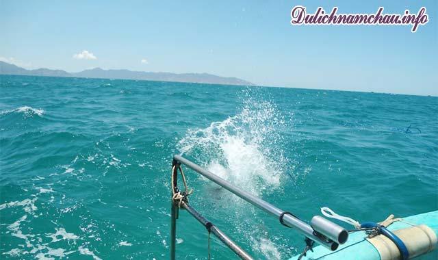 Cù Lao Câu - Vẻ đẹp không tì vết giữa biển khơi