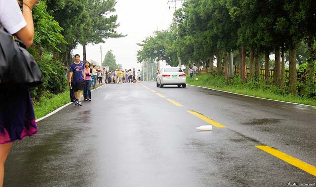 """Bí ẩn """"con đường ma"""" ở đảo Jeju Hàn Quốc"""